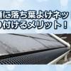 雨樋に落ち葉よけネットの取り付け方と得られる効果!